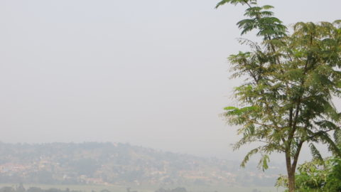 Besuch Uganda 2014<br />